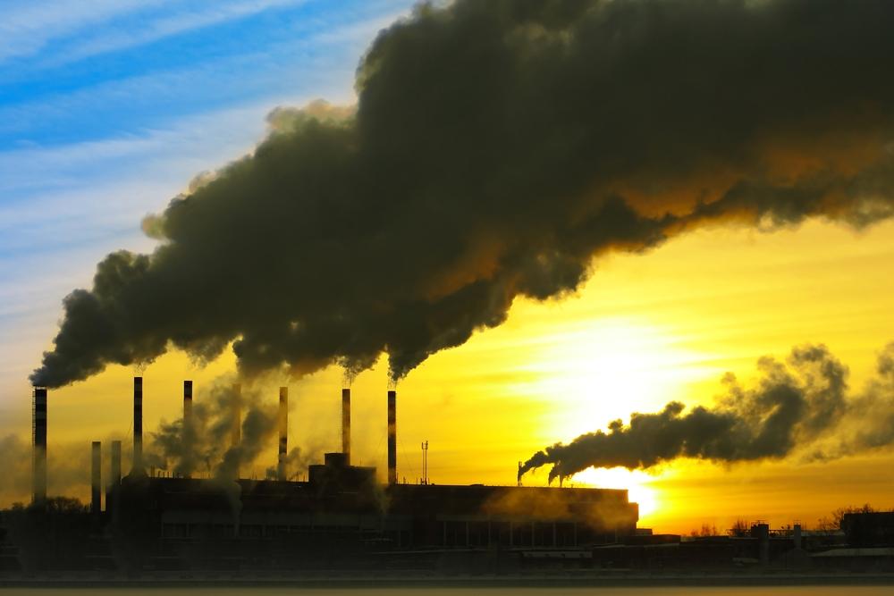 Schützen Sie sich vor den Umweltgiften, die Ihr Gehirn krank machen
