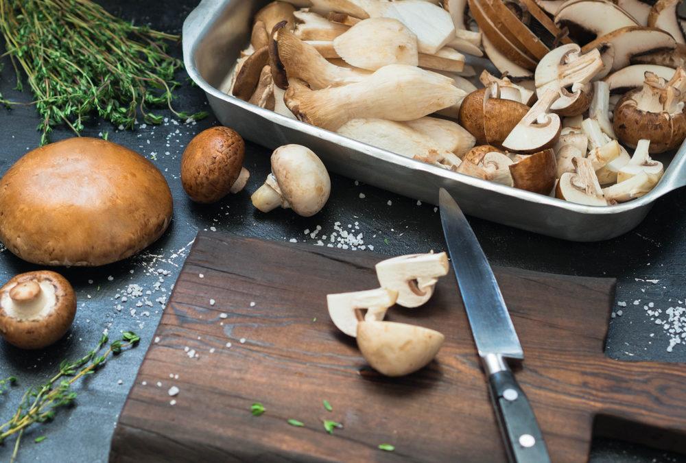 Sind Pilze die neue Quelle ewiger Jugend?